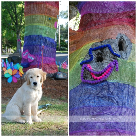 Linus rainbow tree