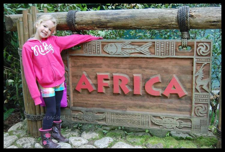 Anna africa