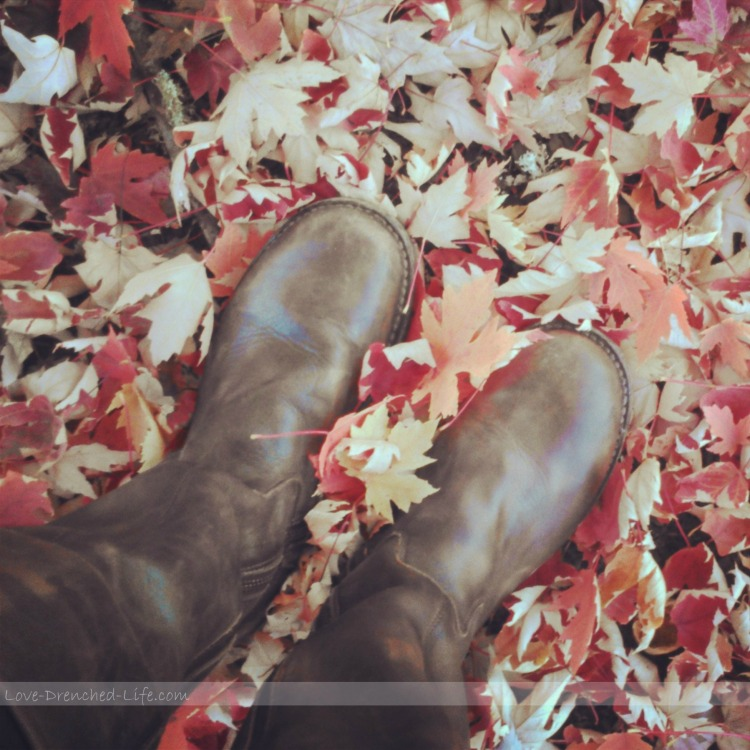 boots in leaves
