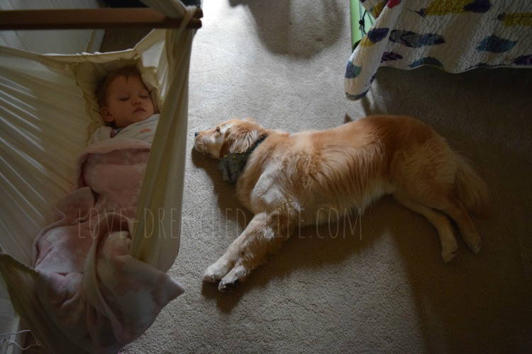 alice linus sleeping